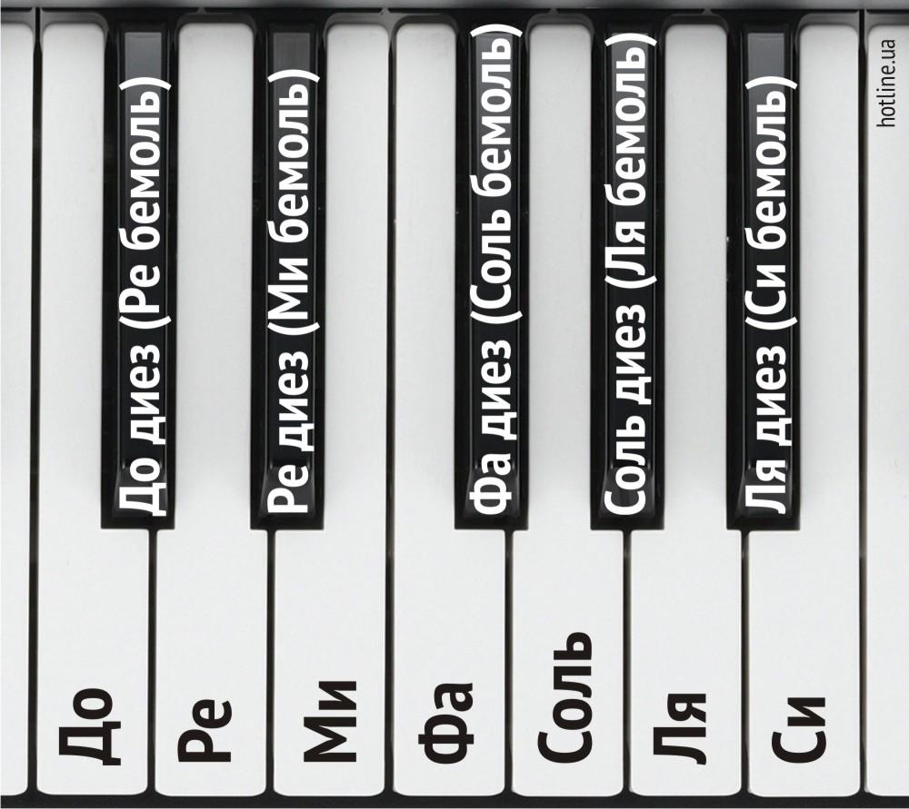 одновременно отгадать слово в картинках пианино ноты клавиша причины, виды