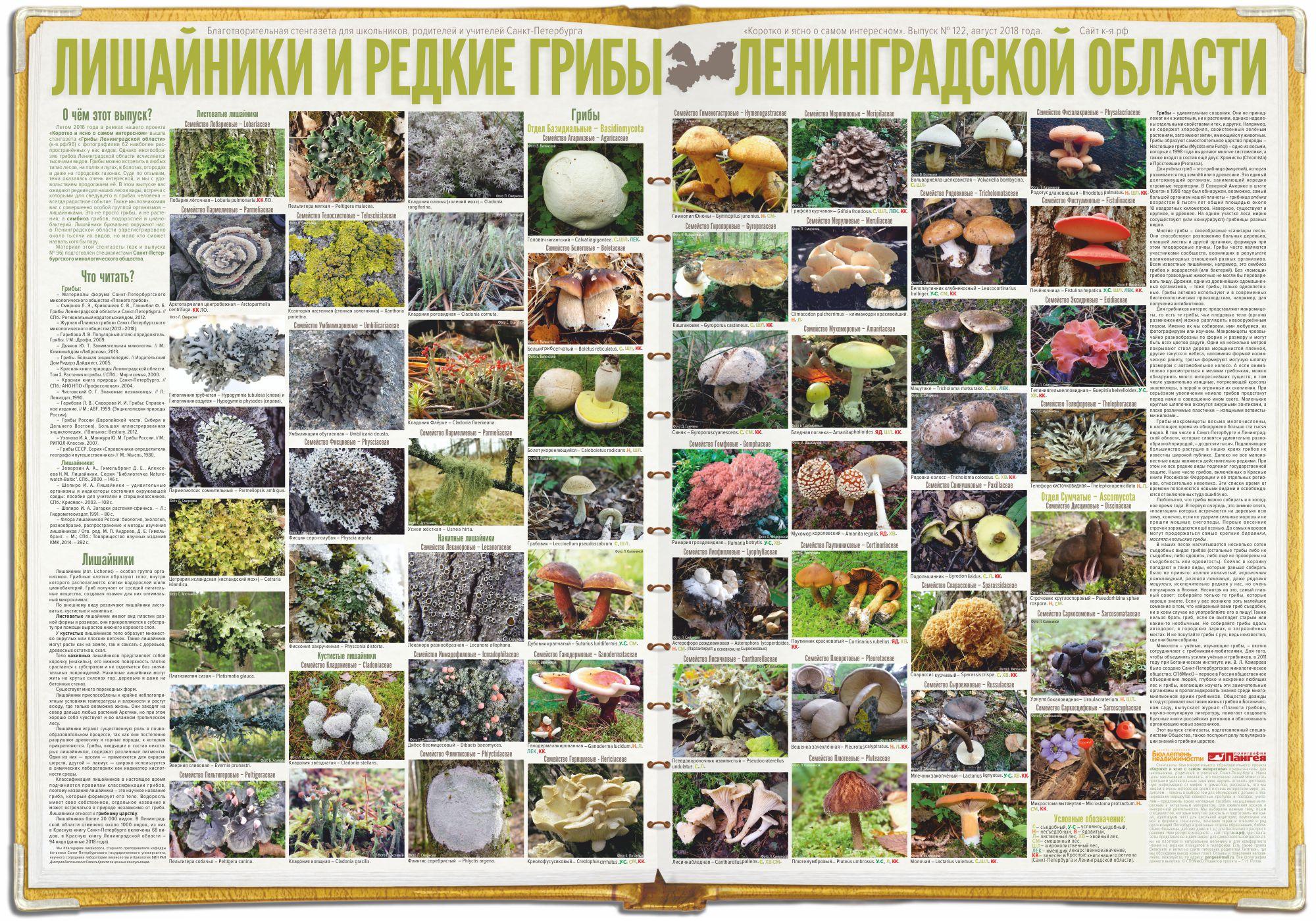 122. Лишайники и редкие грибы Ленинградской области.