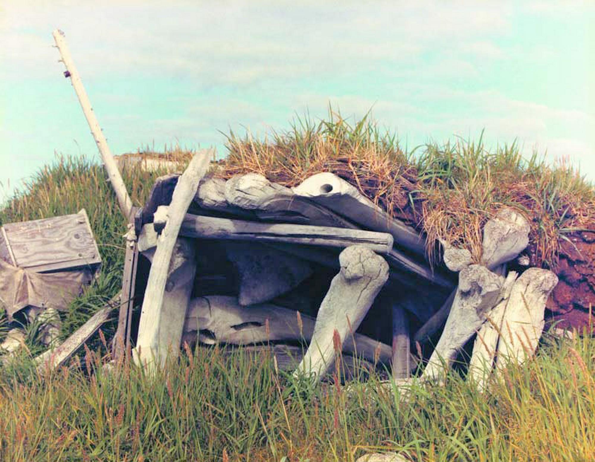 Хижина эскимосов из китовых костей и дёрна, Пойнт-Хоуп, Аляска. В этой хижине до того, как её покинули в 1975 году, было даже электричество (David J. Eves, openphotographyforums.com).