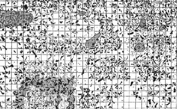 Обломки бивней, костей и зубов мамонтов, а также каменных орудий на плане стоянки у села Молодово, Украина (Quaternary International 276-277, 2012, 215)