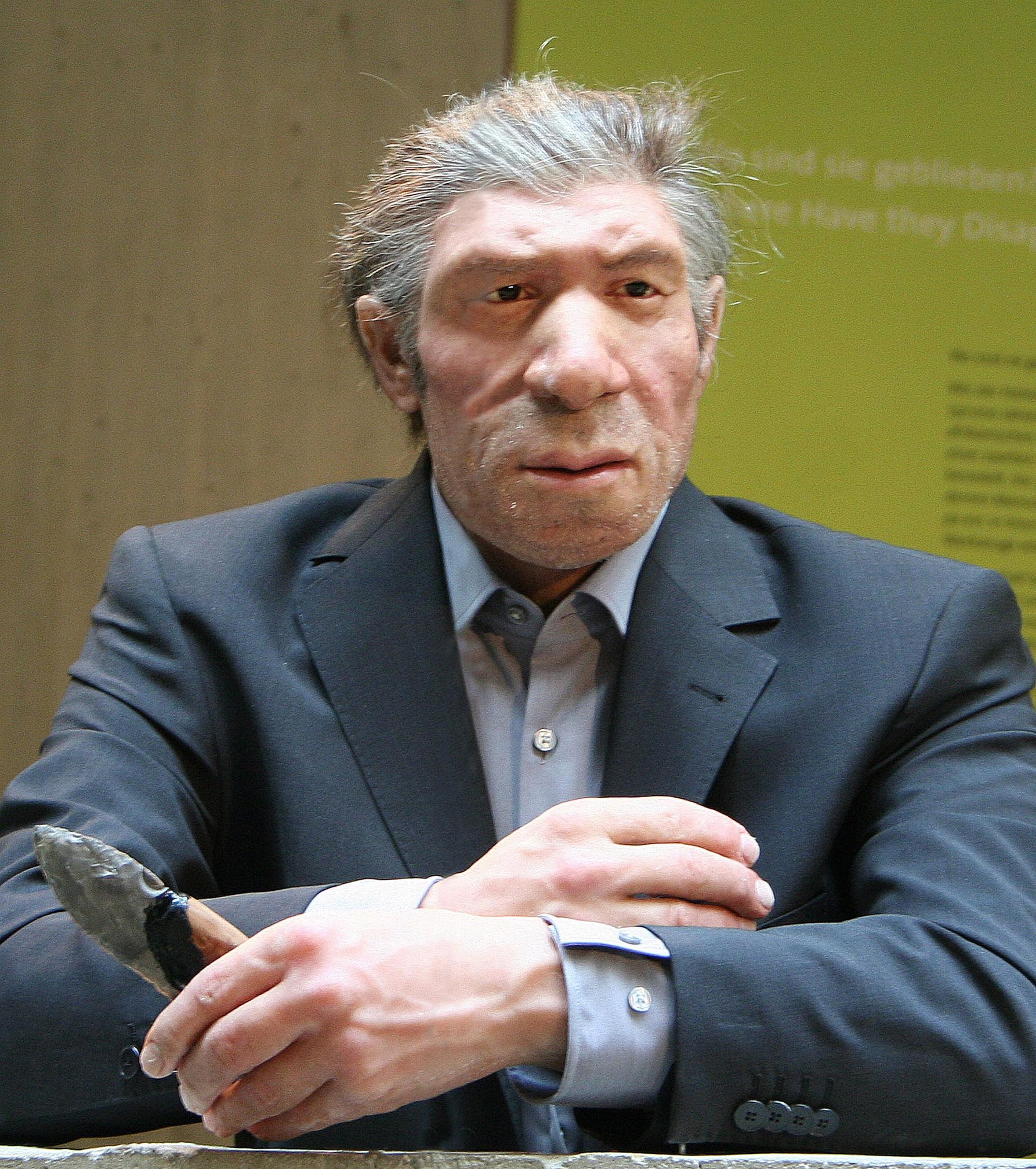 Неандерталец (реконструкция) в современном костюме. Музей неандертальцев, Дюссельдорф, западная Германия (Einsamer Schutz, Wikipedia.org)