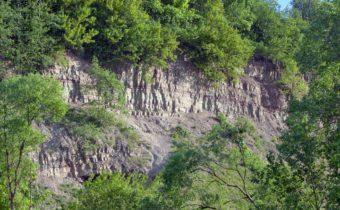 Выходы толщи известняков в долине реки Поповки. Фото: Г.Н.Попов, 2012 г.