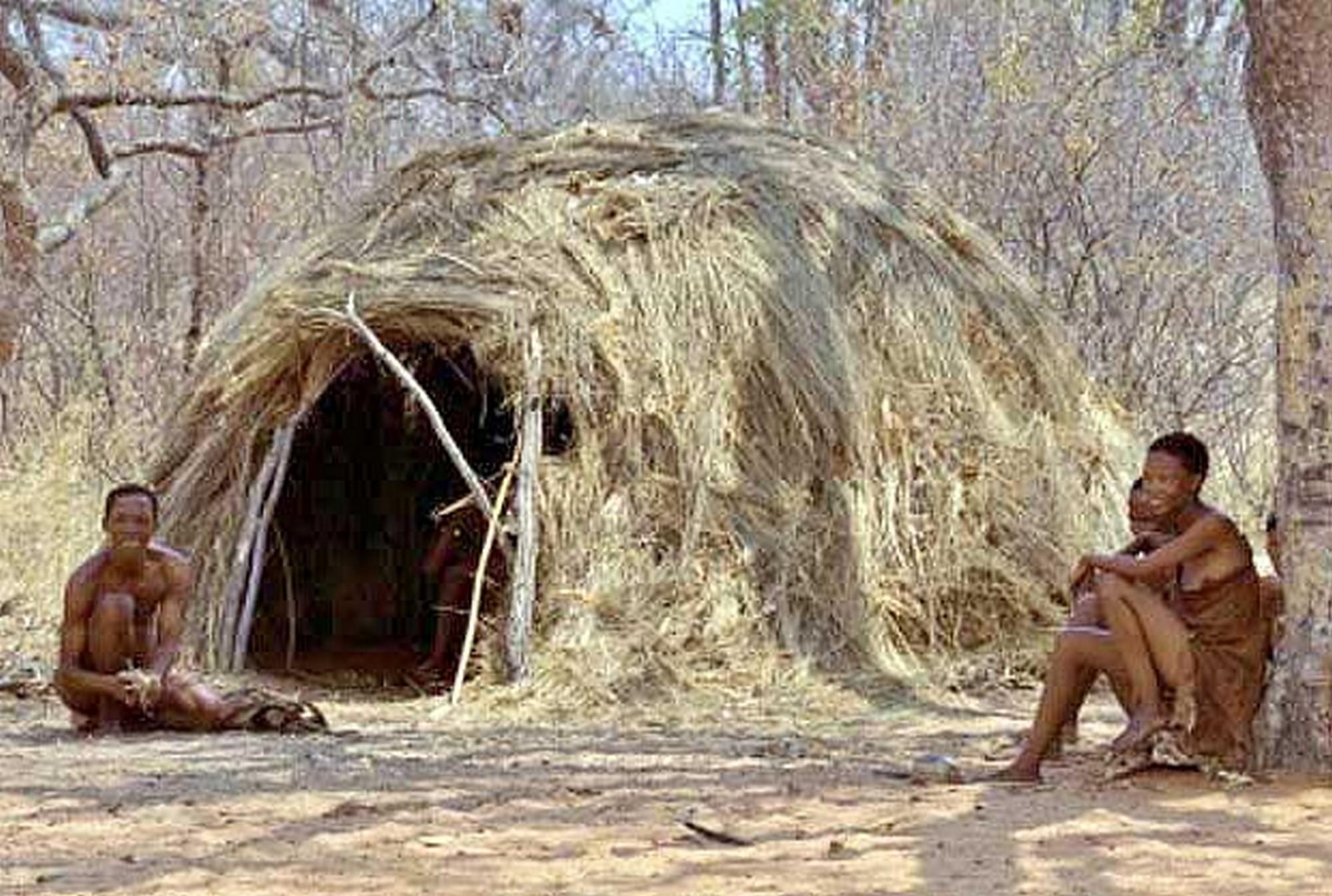 Жилище бушменов – коренного населения Южной Африки (saluteafrica.co.za).