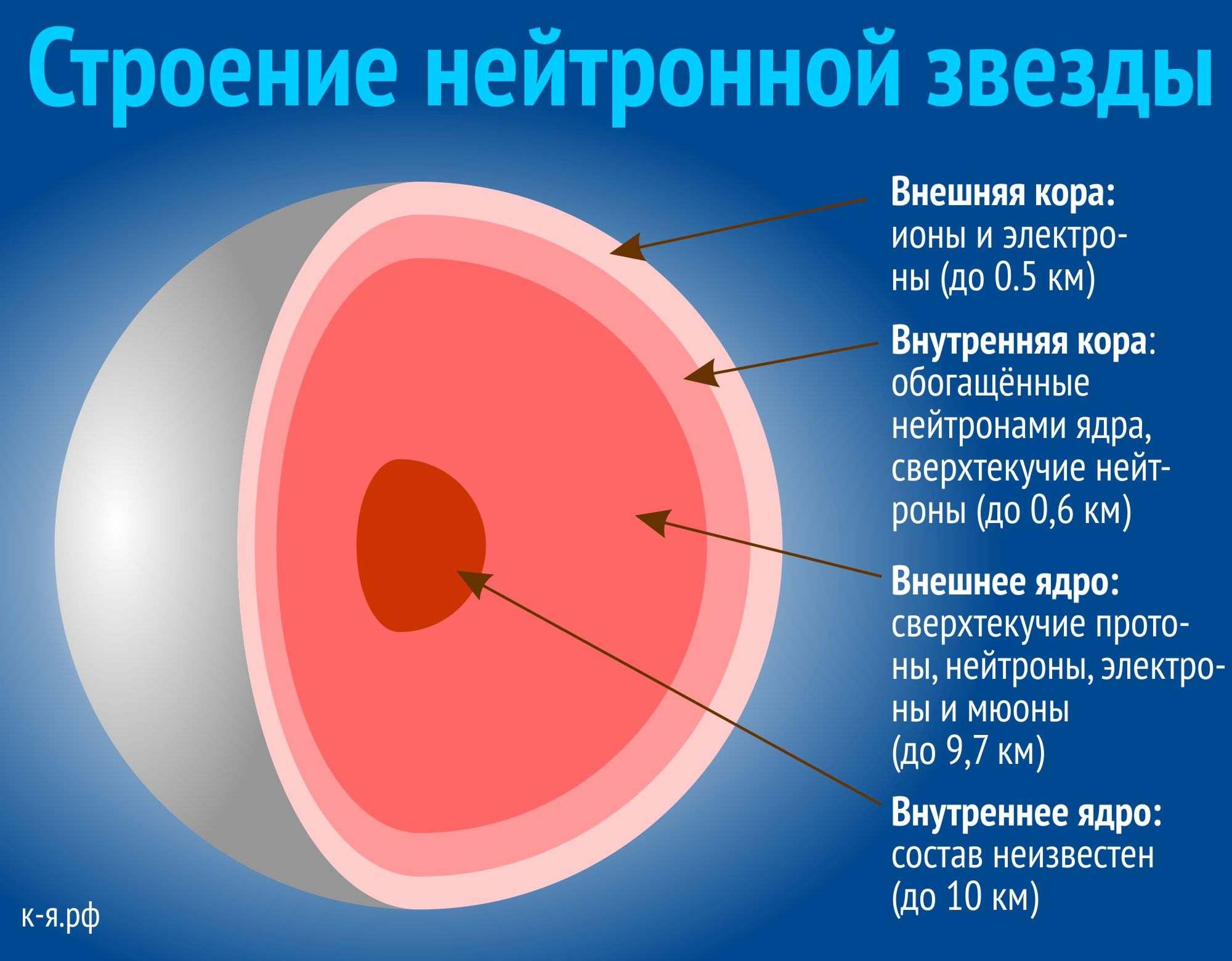 Нейтронная звезда в разрезе (v.uecdn.es).